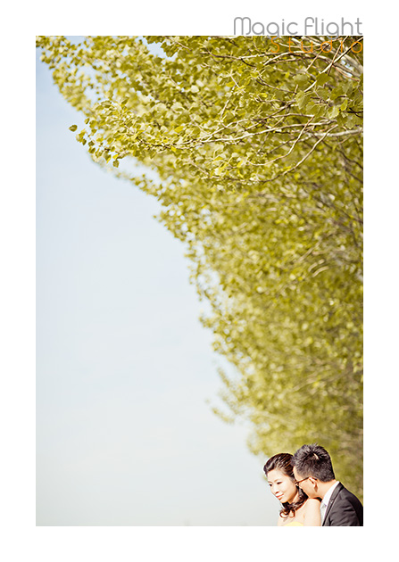法国婚纱摄影, pre wedding shoot session in Paris 13