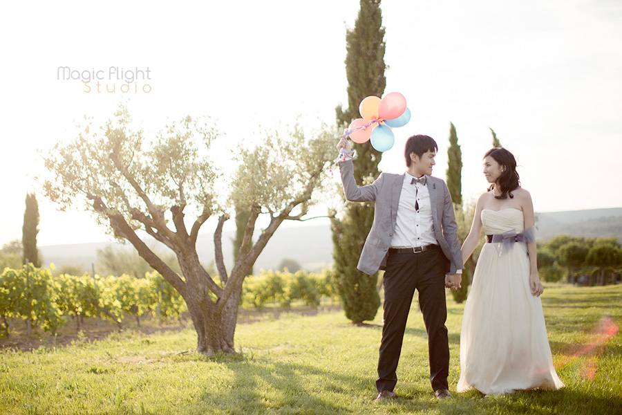 pre wedding around aix en provence