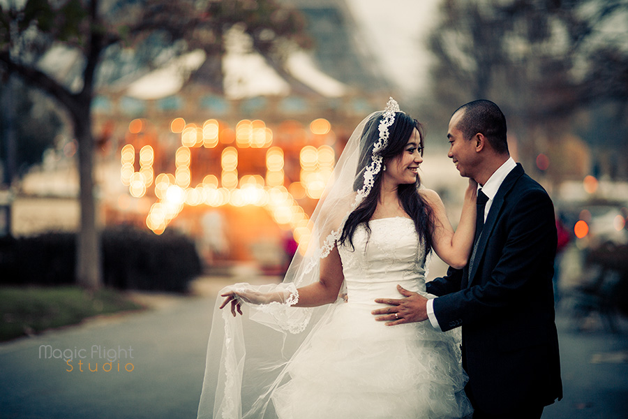 pre wedding photographer 59