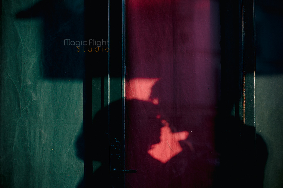 photographe-16