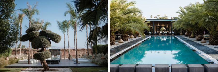 Mariage à Marrakech, palmiers et piscine 1